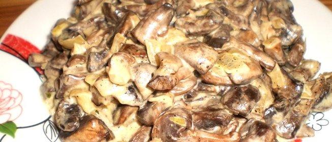 Рецепт жареные вешенки с луком и сметаной