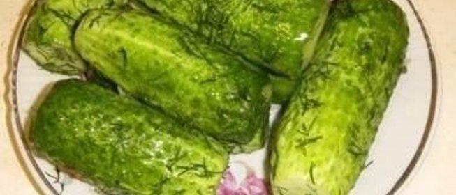 Огурцы малосольные рецепт с пошагово в