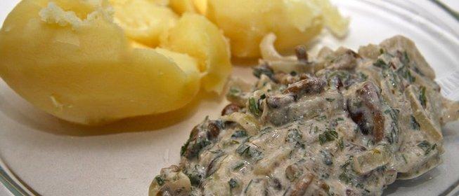 Блюда из замороженных опят рецепты с фото
