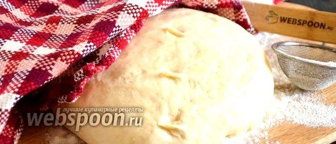 Дрожжевое простое тесто с фото