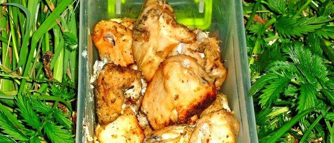 Шашлык из курицыы маринада с киви